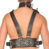 ledapol 8043 sm harnais de poitrine en cuir homme - gay harness